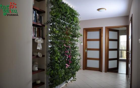 Žaliosios sienos gražu ir praktiška