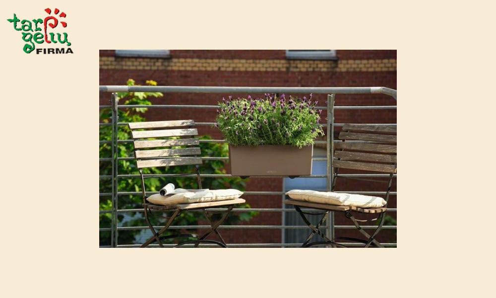 balkonera-color-vazonai-blog