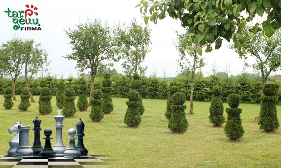 """""""Tarp gėlių"""": nauji vėjai jūsų sode - žaliųjų šachmatų lenta"""