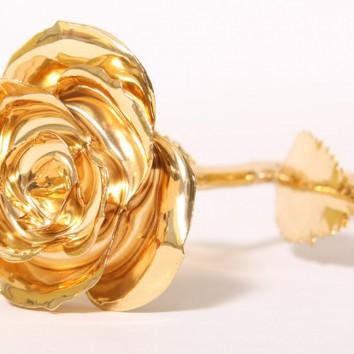 Auksinės rožės paslaptis
