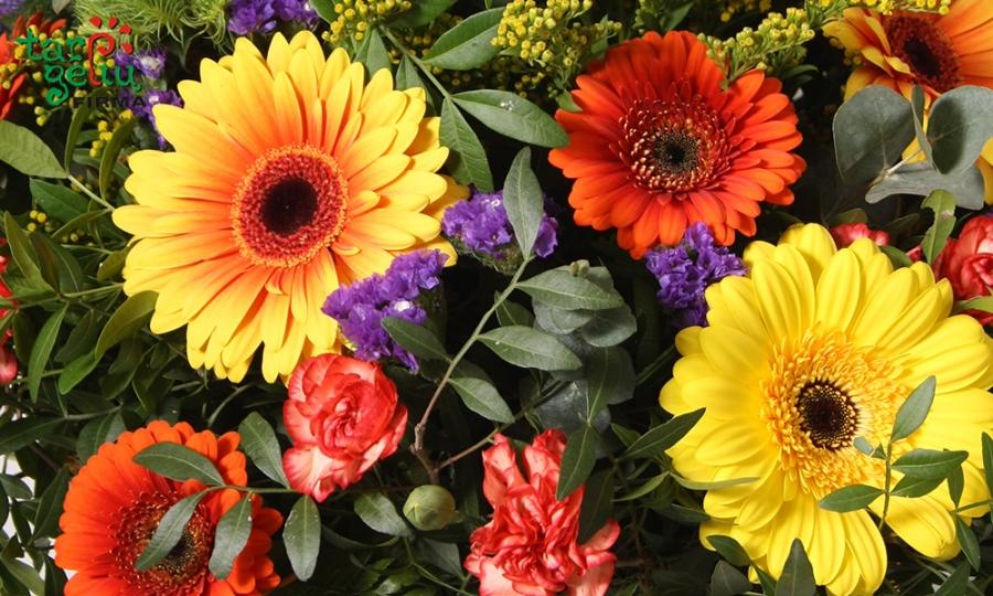 Gėlių terapija – ne pramanas