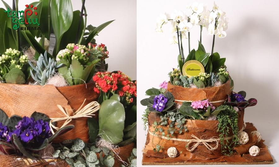 Tortas iš gėlių