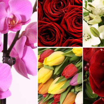 Gėlės Valentino dienai TOP 5