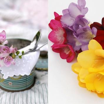 Frezijos – kvapnios gėlės