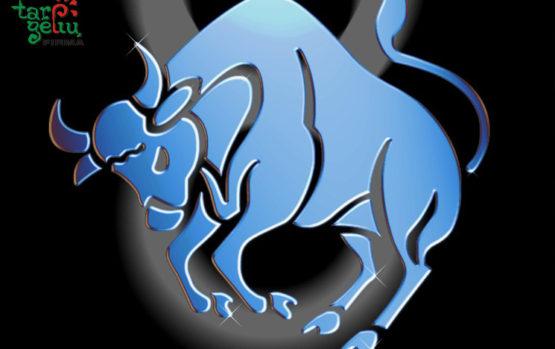 Dovanos pagal Zodiako ženklą: Jautis