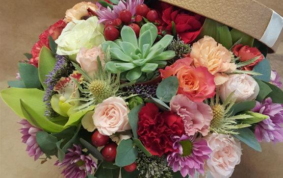 Dovanoti skintas gėles ar vazoninį augalą