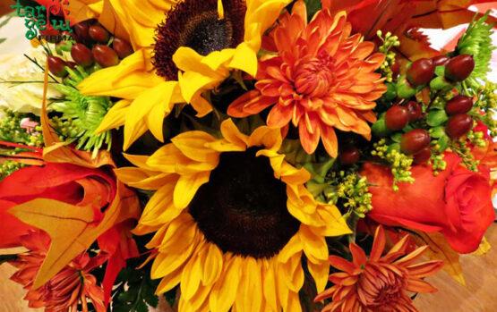 Populiariausios rudens gėlės