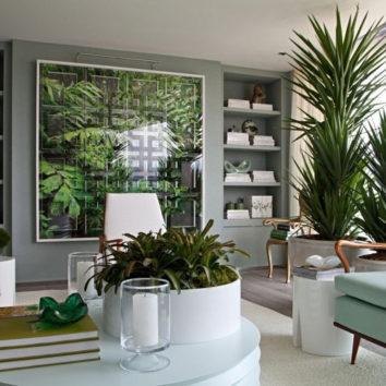 Apie kambarinius augalus iš mokslininkų lūpų