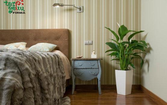 Miegamojo erdvę harmonizuojantys augalai