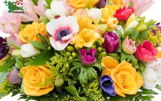 Šis tas apie skintų gėlių derinius