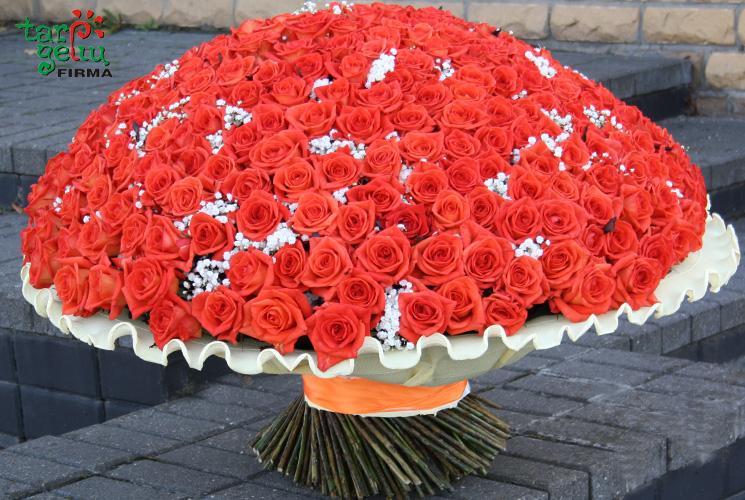 Milžiniška rožių puokštė