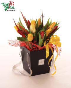 Įvairių spalvų tulpės dėžutėje