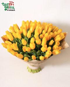 Geltonų tulpių puokštė