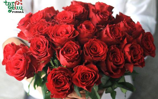 Tos karalienės rožės…