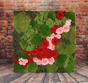 samanos-ir-rozes2