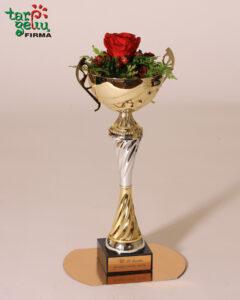 Nugalėtojų taurė